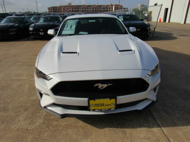Owner 2019 Ford Mustang EcoBoost 2749 Miles Oxford White 2dr Car Intercooled Turbo Pre