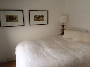 Beautiful and fully furnished apartment to rent in the best area