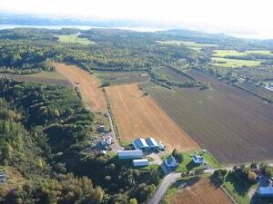 GRANDE FERME AGRICOLE - PRIX RÉDUIT Saguenay Saguenay-Lac-Saint-Jean image 1