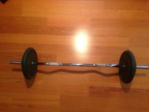80lbs Standard 1 inch Weights + Standard EZ Curl OR Straight Bar