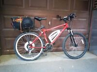 Electric Mountain Bike (Converted)