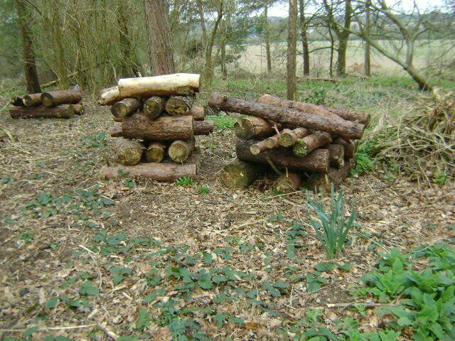 FIRE WOOD FOR SALE SUITABLE FOR LOG BURNERS OR OPEN FIRESin Coventry, West MidlandsGumtree - FIRE WOOD FOR SALE FOR LOG BURNERS OR OPEN FIRES . THIS WOOD COMES IN METRE LENGTHS OF VARIOUS THICKNESSES. CONSIST OF SCOTS PINE . COLLECT ONLY. I HAVE OTHER AMOUNTS OF WOOD CONTACT FOR DETAILS