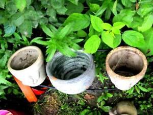 7 Garden Ceramic Pots - This week only!