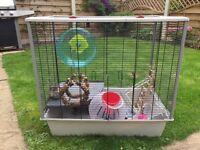 rat cage plus accessories