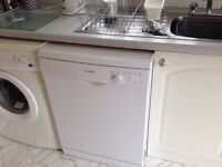Dishwasher (1 year old, rarely used