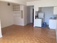 Nice Studio in Downtown short term or long term rent