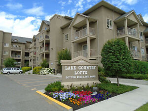 Modern suites at Lake Country Lofts!