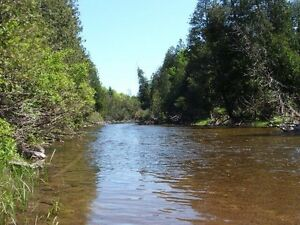 WANTED - Saugeen River Property