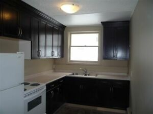 Immaculate 1 Bdrm – NOW  or July 1/19  $795.00 Regina