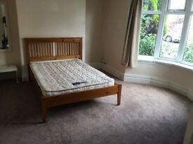 2 Double Bedroom Ground Floor Flat with Courtyard Garden, Sandyford Newcastle - Available July 1st