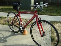 Trek 24 Speed Hybrid Bike in Perfect Order