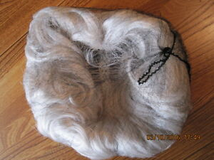 Vtg High Quality NEW IMAGE Salon Collection Grey Wig in Box