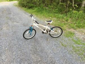 "Girls 20"" tire bike, 6 speed with hand brakes, in good shape"