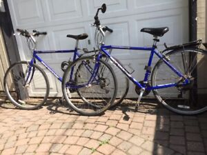 d9aaf230b6e Mongoose Bike 21 Speed   New and Used Bikes for Sale Near Me in ...