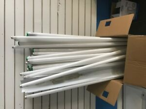 free Fluorescent light bulbs and cases ( You Must Pick up )
