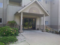 2 beds/2 baths Luxury Condo: Minutes from University of Windsor