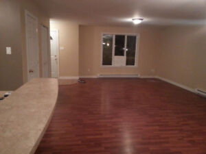 LARGE 2 BEDROOM APARTMENT IN PLATEAU