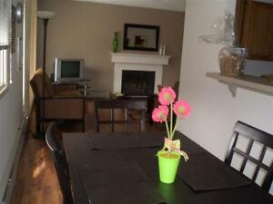 1 & 2 BEDROOM UNIT, FULLY FURNISHED, UTIL INCL, INTERNET & CABLE