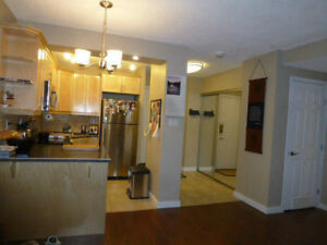 Air Conditioned, Cozy Condo with a Big Patio View of the River