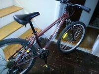 Disc brake Norco mountain bike **PRICE DROP**