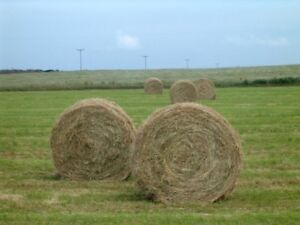 Part Load of Round Bales Wanted