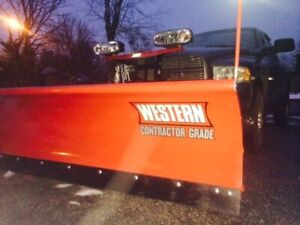 Western Pro  8 ft straight blade - free salter for quick sale