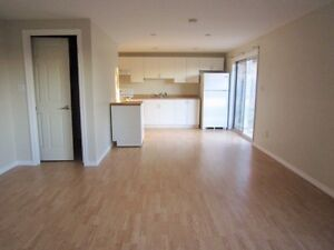 One bedroom walkout basement unit in south Barrie