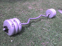 33 lb 15 kg Grey Dumbbell & Barbell Weights - Heathrow