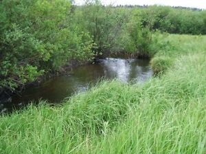 40 Acres for sale in Logan Lake