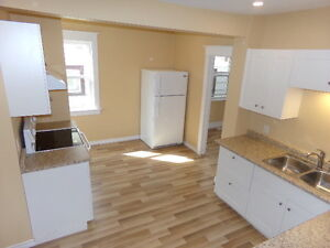 Completely Renovated 4 Bdrm 2 Bath House For Sale!