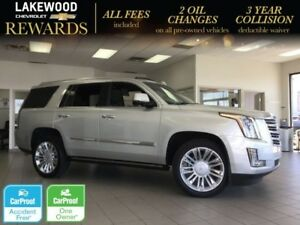 2015 Cadillac Escalade Platinum 22 (Heated Leather, WiFi, Magnet