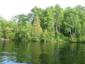 Great Waterfront Lot on Paudash Lake!!