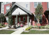 Executive Condo in Summerside Avail Now