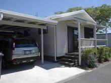 Cabin (studio style) in Residential Park near Kingscliff NSW Kingscliff Tweed Heads Area Preview