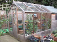 greenhouse/shed combined