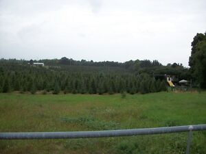 15.5 acres of residential land in Downtown Carleton Place