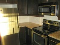 Large North York Condo For Rent Yonge and Leslie  $1650