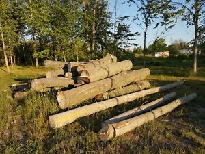 LOGS FOR SALE.   BEST OFFER WILL TAKE