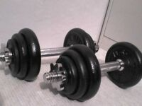 46 lb 21 kg Metal Spinlock Dumbbell Weights - Heathrow