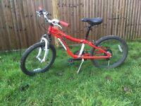 """Children's Bike Specialized Hotrock 20"""""""