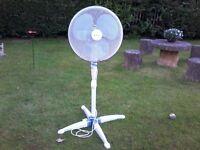 Upright 3 speed freestanding electric fan