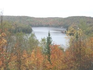 MCS-safe bungalow on 14.67 acres with lake access