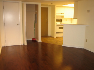 2 Bedroom Condo Rental Unit at 1001 Bay Street Available