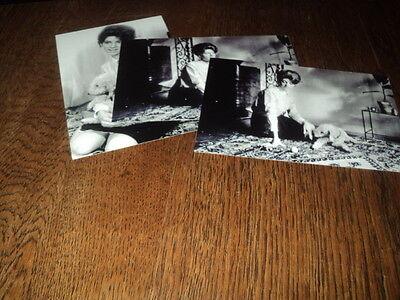 SHEILA LOT DE PHOTOS FORMAT 10*15 N&B - THEME 033 CANICHE - 3 PRISES