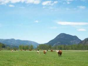 WATERFRONT 170 Acre Ranch In Little Fort
