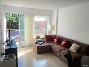 Beautiful 1 bdrm condo in the Quartier des Spectacles for RENT!