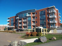 Executive condo in the heart of downtown-50 Assumption Blvd