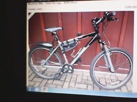 Giant Terrago Mountain Bike 6000 aluxx