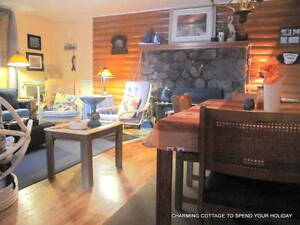FULLY FURNISHED, WINTERIZED COTTAGE ON CHEMONG LAKE, Peterborough Peterborough Area image 5