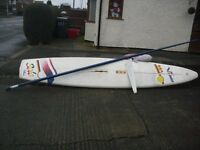 Vinta Solo Wind Surf Board with sail complete
